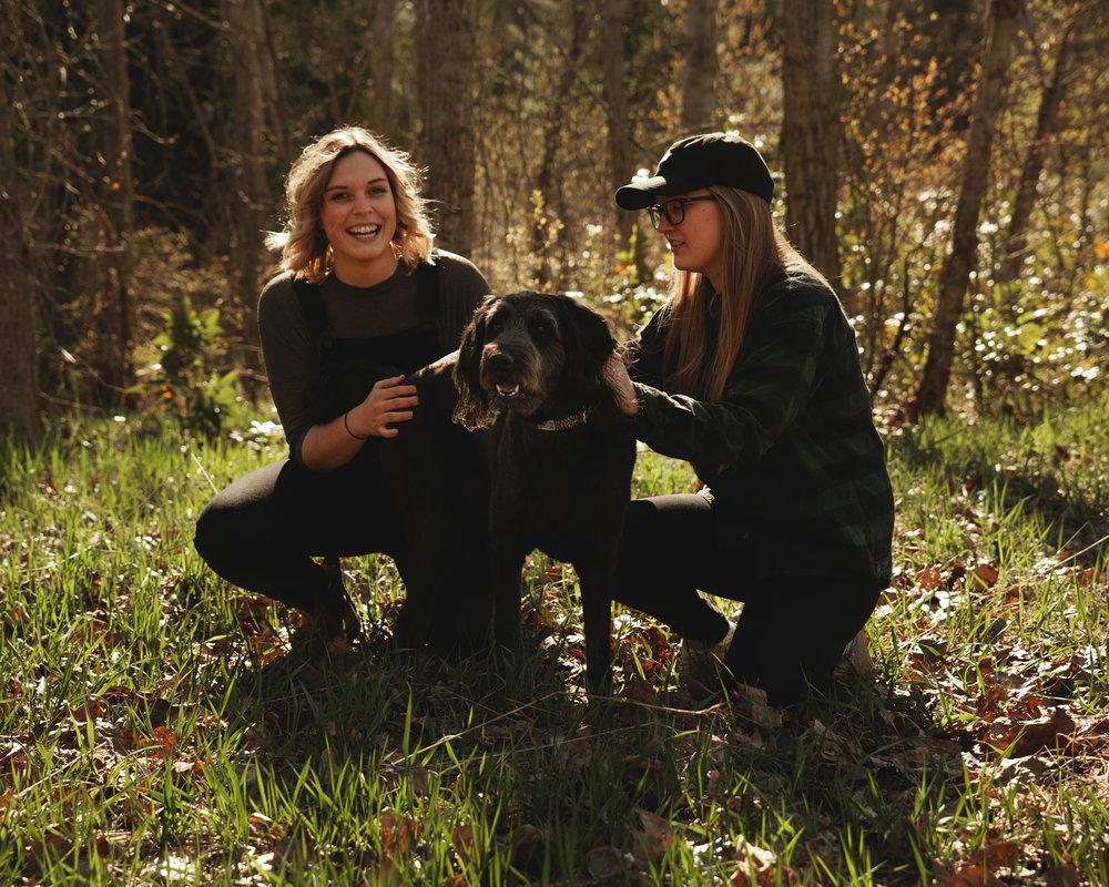 dog cute puppy couple okanagan lake autumn mission creek.jpg