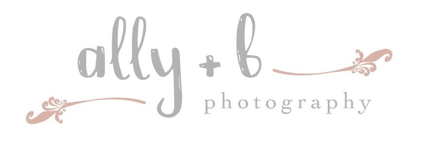 Ally + B photography | Naperville Newborn Photographer | Naperville Family Photographer | Naperville Child Photographer