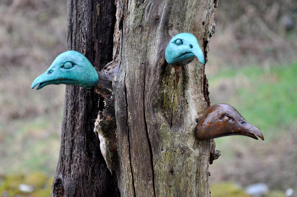 Pheasant Heads