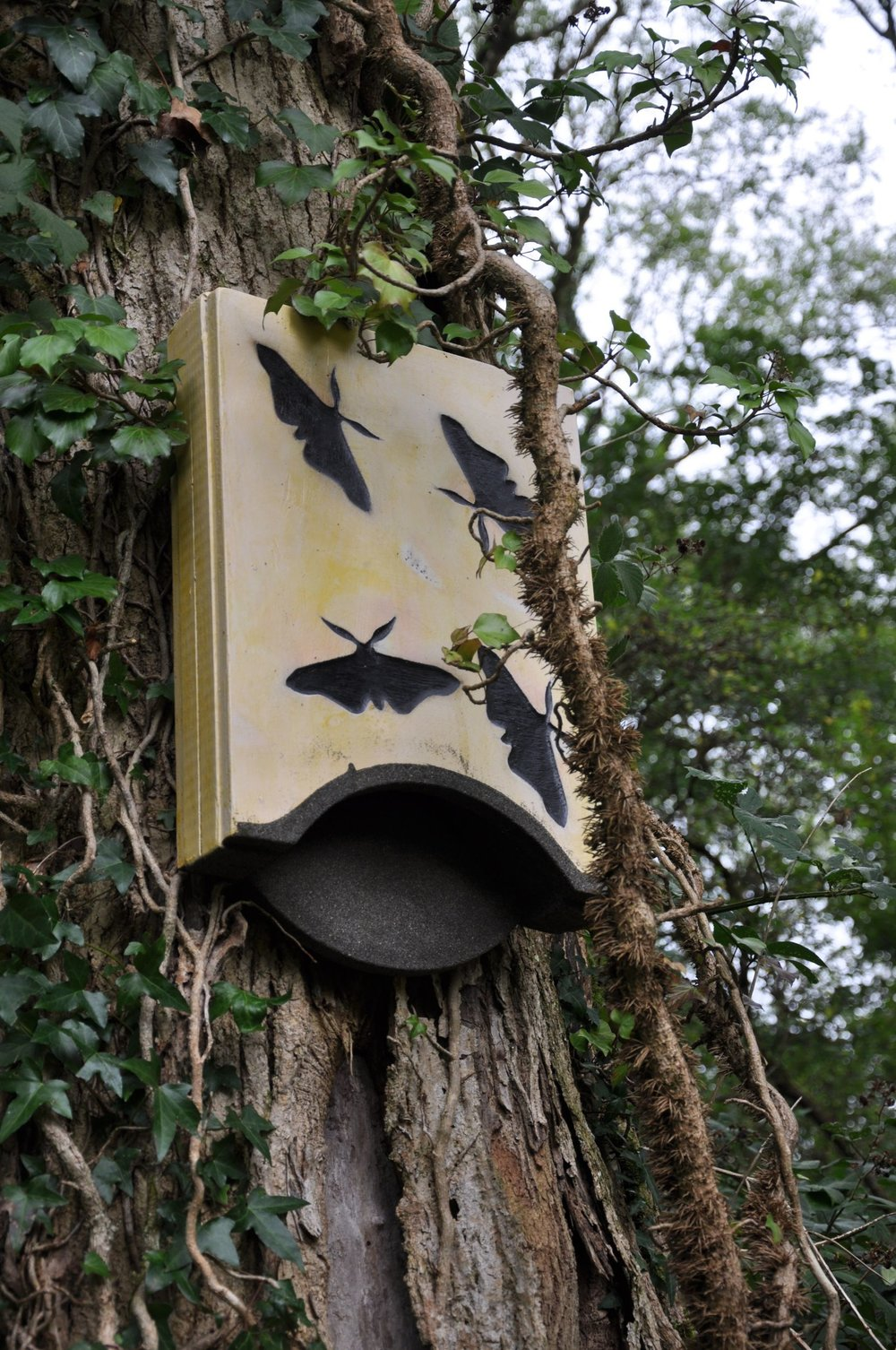 Decorated Bat Box.jpg