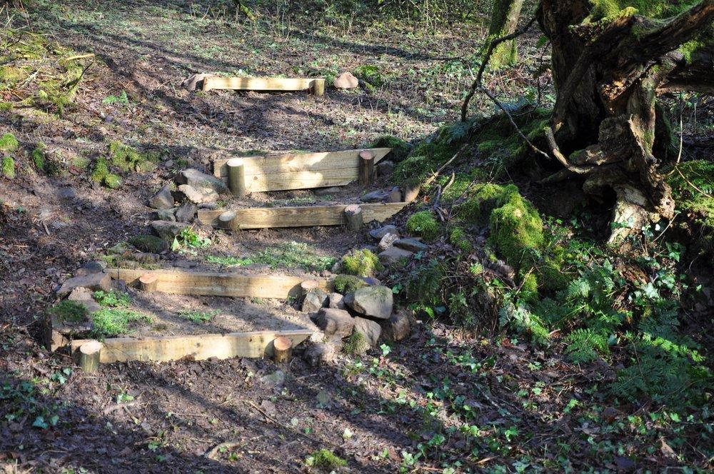 Spinney Steps.jpg