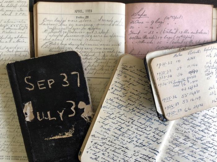 Diaries.png