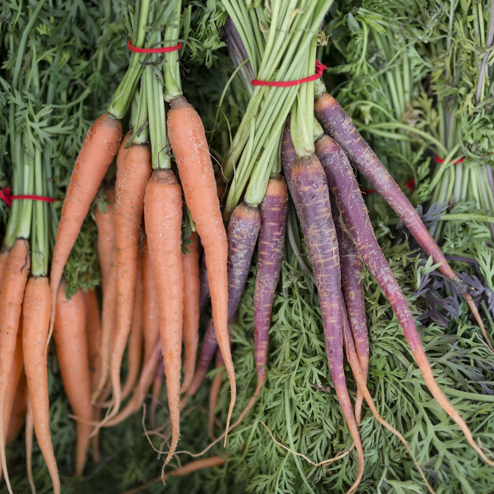 European-Salad-Company-carrots.jpg