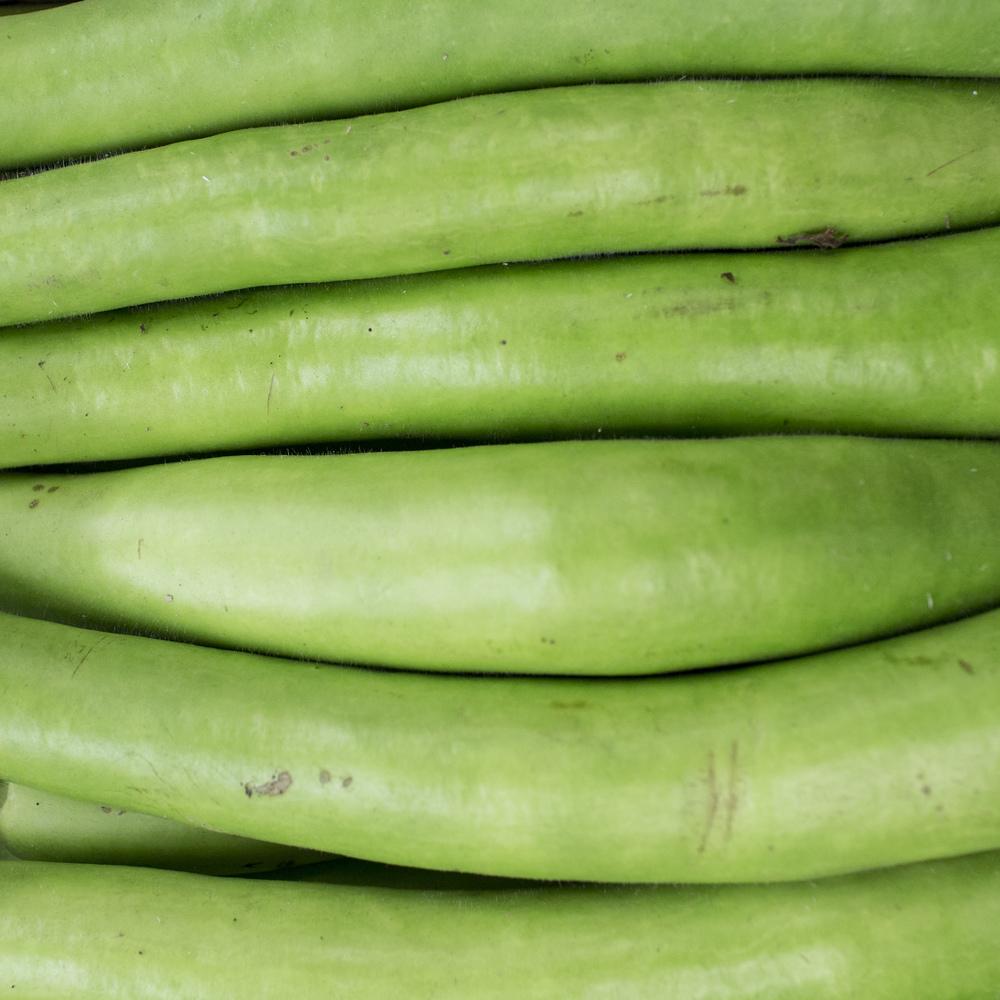 European-Salad-Company-snake-gourd.jpg