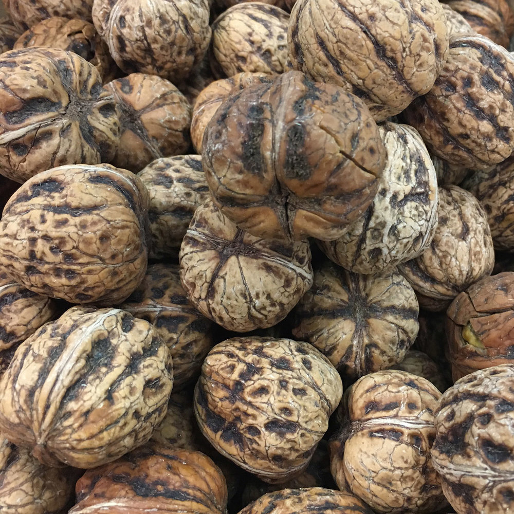 european-salad-company-wet-walnuts.jpg