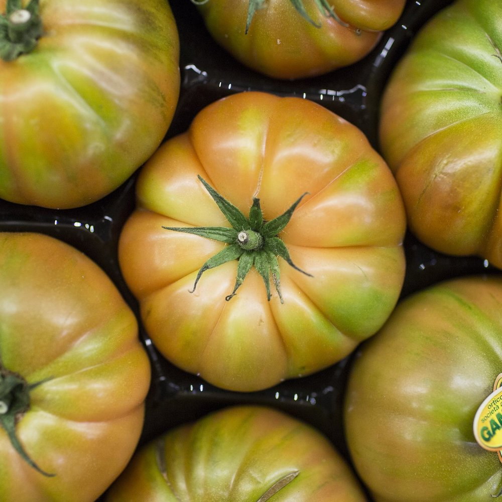 european-salad-company-costoluto-tomatoes.jpg