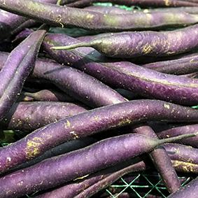 violet-haricots-aiguillettes-european-salad-company.jpg
