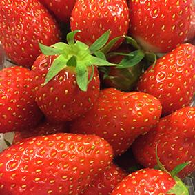 Gariguette Strawberries at European Salad Company