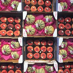 european-salad-company-peaches-melons.jpg