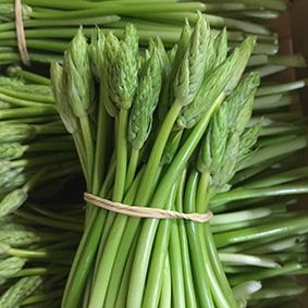 european-salad-company-wild-asparagus.jpg