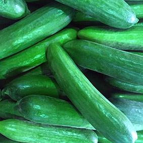 cucumbers-european-salad-company.jpg