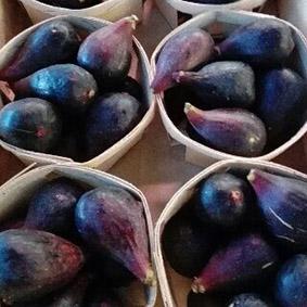 black-figs-european-salad-company.jpg