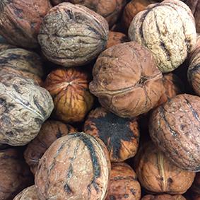 european-salad-company-walnuts.jpg