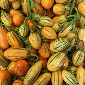 european-salad-company-aubergines.jpg