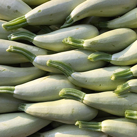 european-salad-company-courgette.jpg