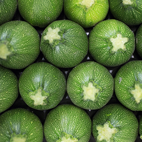 european-salad-company-round-courgettes.jpg
