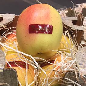 european-salad-company-apple-3.jpg