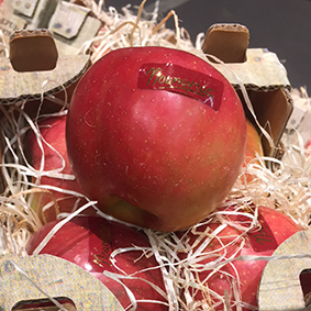 european-salad-company-apple.jpg
