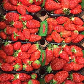 european-salad-company-strawberries-large.jpg