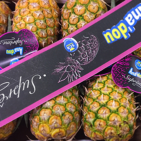 european-salad-company-pineapples.jpg