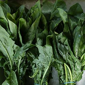 spinach-esc-market-report-2018.jpg