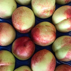 esc-market-report-august-2018-peaches.jpg