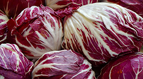 Tondo - Round radicchio is the most common variety and available all round. It is also grown in the UK. Available all year round.