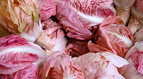 Rosa - Very fashionable with chefs on account of its colour. Available around November to March.
