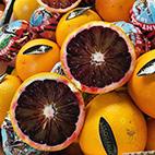 esc-blood-oranges.jpg