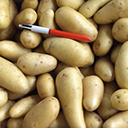 esc-potatoes.jpg