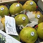 esc-crassane-pears.jpg