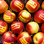 esc-valentines-apples.jpg