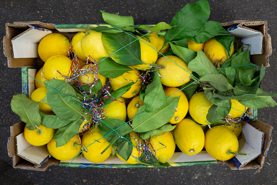 Lemons - We sell many varieties when in season: seedless; Primo Fiore, Verdello, Sorrento, Sicilian Amalfi lemons and more. Sorrento, for example, are used in the production of the Limoncello liqueur, and come only from the Solagari Cooperative. They are good to eat raw. Amalfi and Sorrento lemons are used simple recipes like lemon-marinated anchovies or soft Amalfi Coast lemon cream. Verdelli are early in the season: pale green, short season, hard to get hold of and much desired.