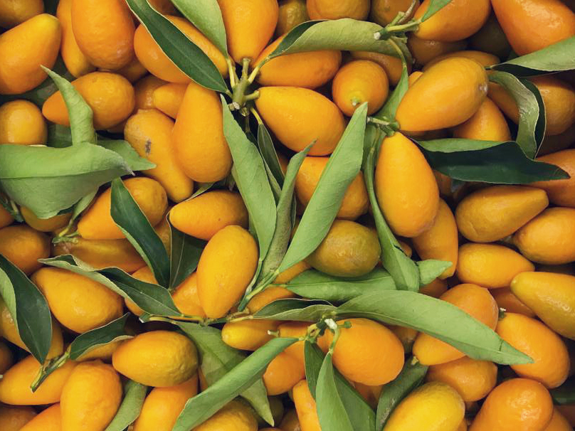 Kumquats - Kumquats are growing in popularity. Leafy kumquats are hard to find and these are best of the best. You can eat the whole fruit - skin and all - and the flavour is a fantastic contrast between the sweet skin and sour juice. Italian season approx. Feb-March.