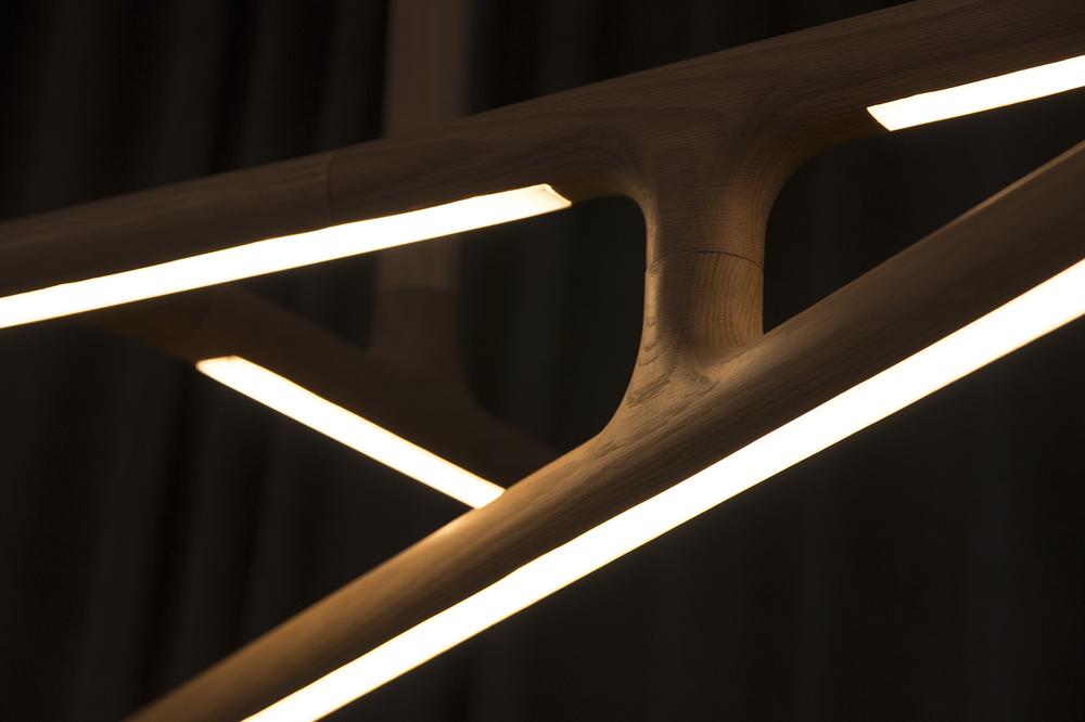alex-earl-antler-light-close-up.jpg