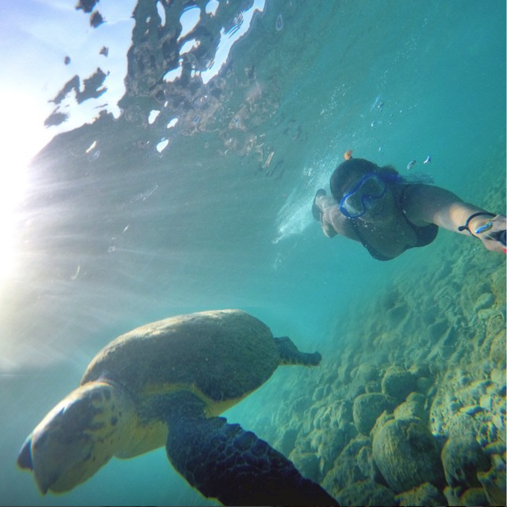 That's Lucky @naylabissat Swimming with my friends 🐢