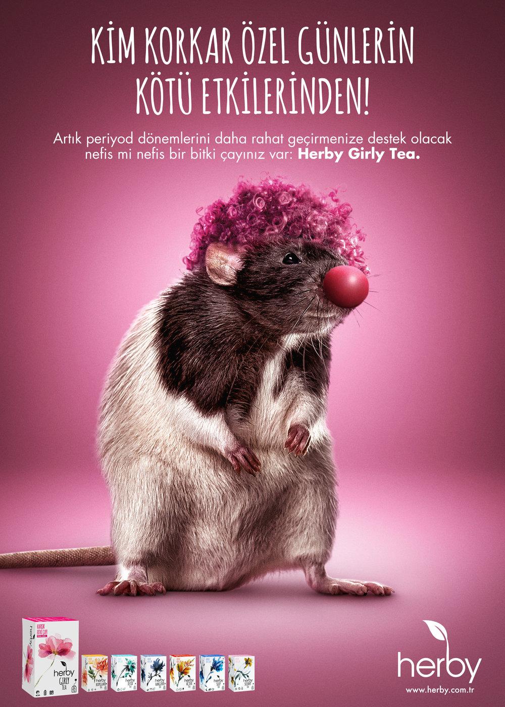herby-rat.jpg