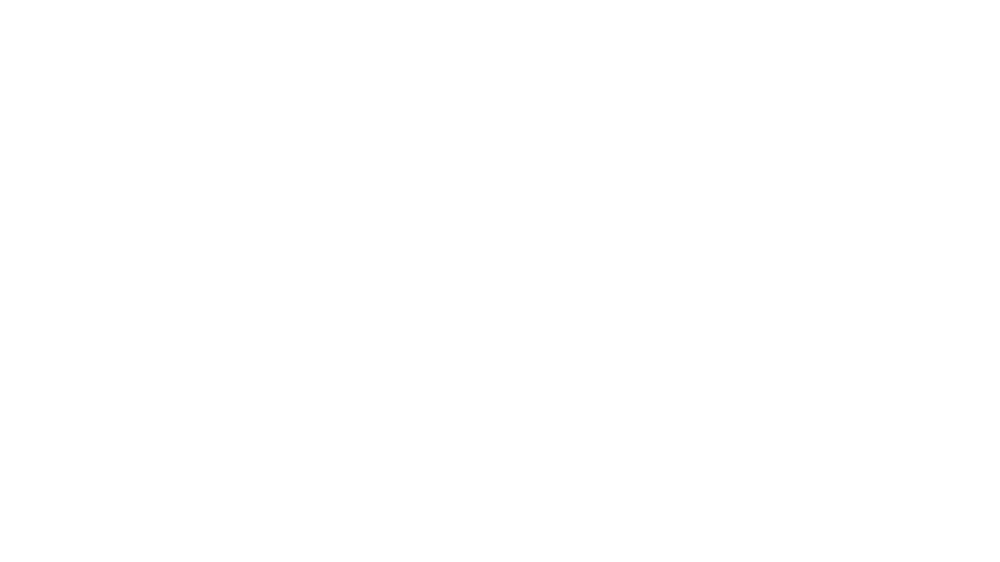 toolfest logo white.png