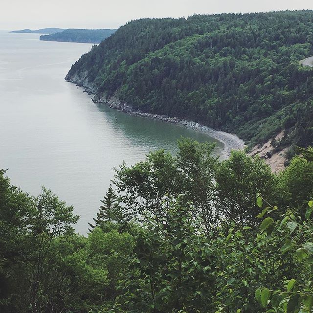 One of the best drives and hikes in the country. #fundytrail #newbrunswick #eastcoastcanada #getoutside #staycation #slowliving