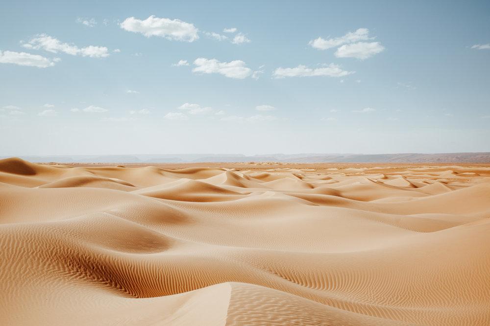 Sand dunes during summer in Sahara desert in Morocco