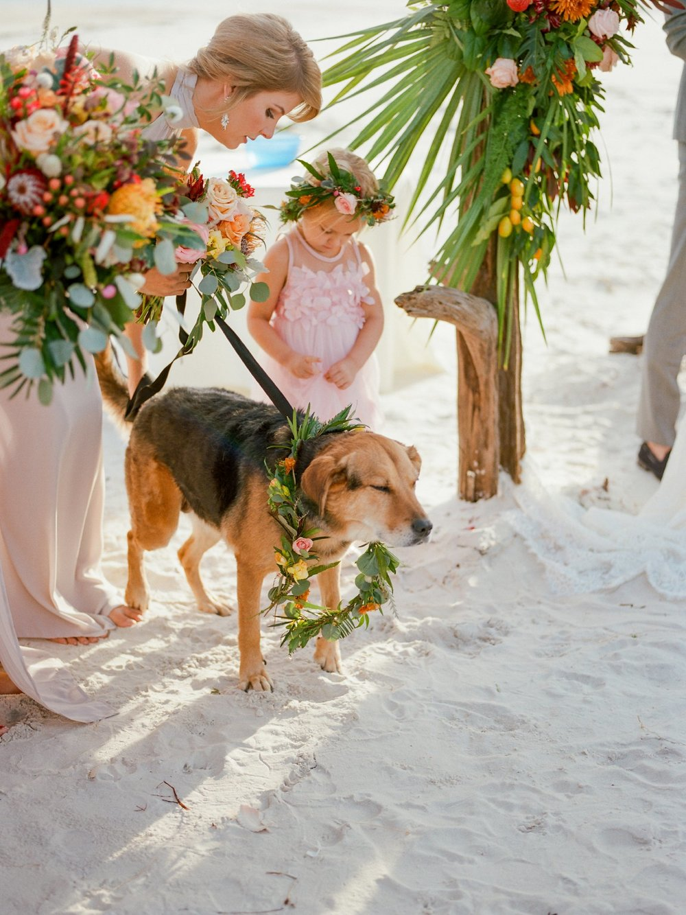 st george island wedding st george island photographer shannon griffin photography_0066.jpg
