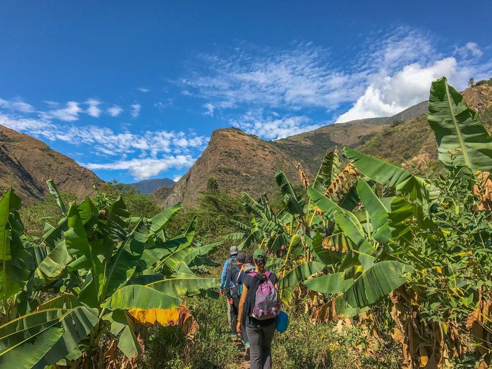 Stunning views during the entire trek to Machu Picchu