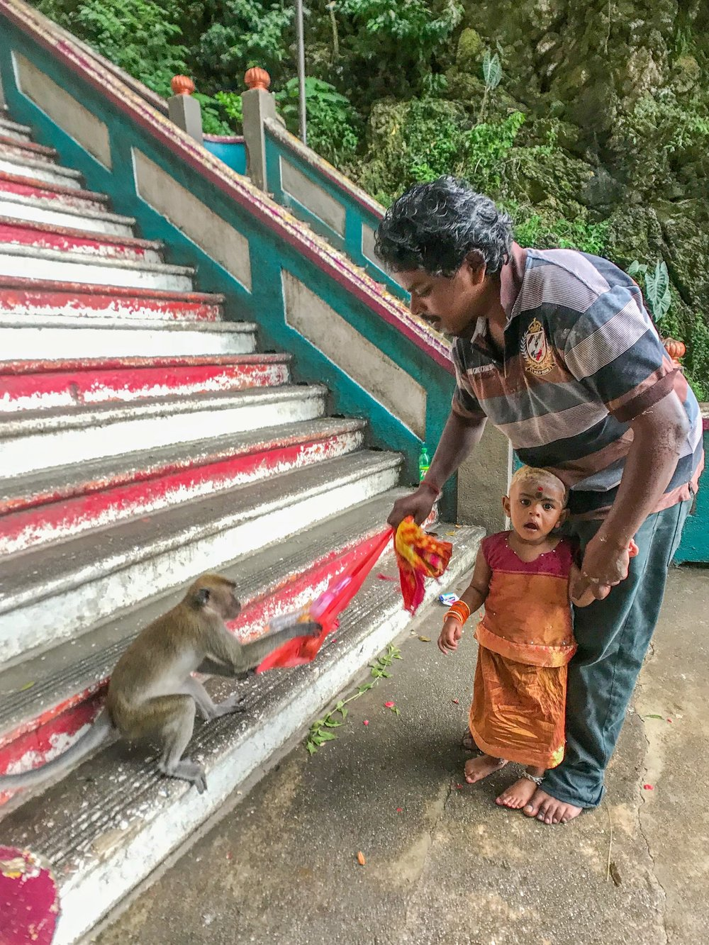 Batu Caves monkeys strike again