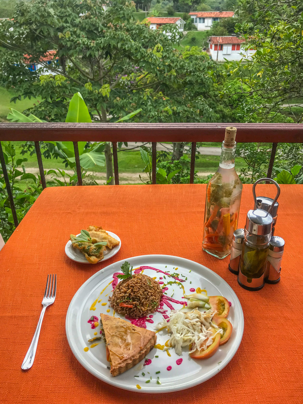 Farm-to-table cuisine in Las Terrazas, Artemisa