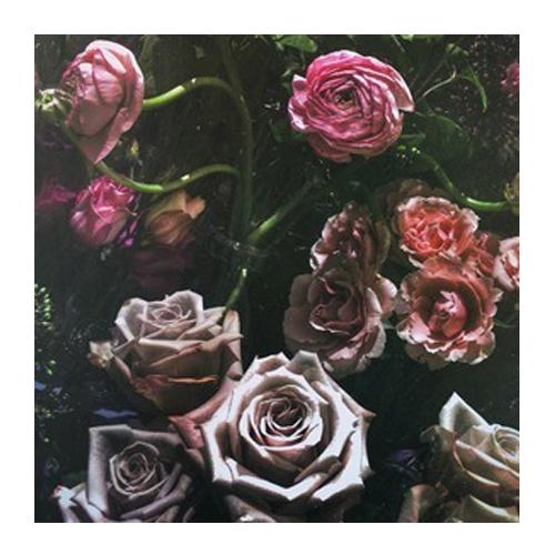 Floral 5 by Erik Melvin