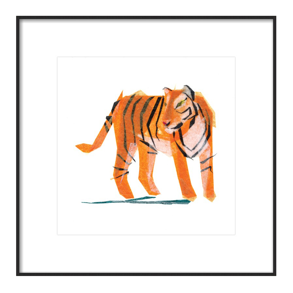 Jack Tiger by Darrah Gooden