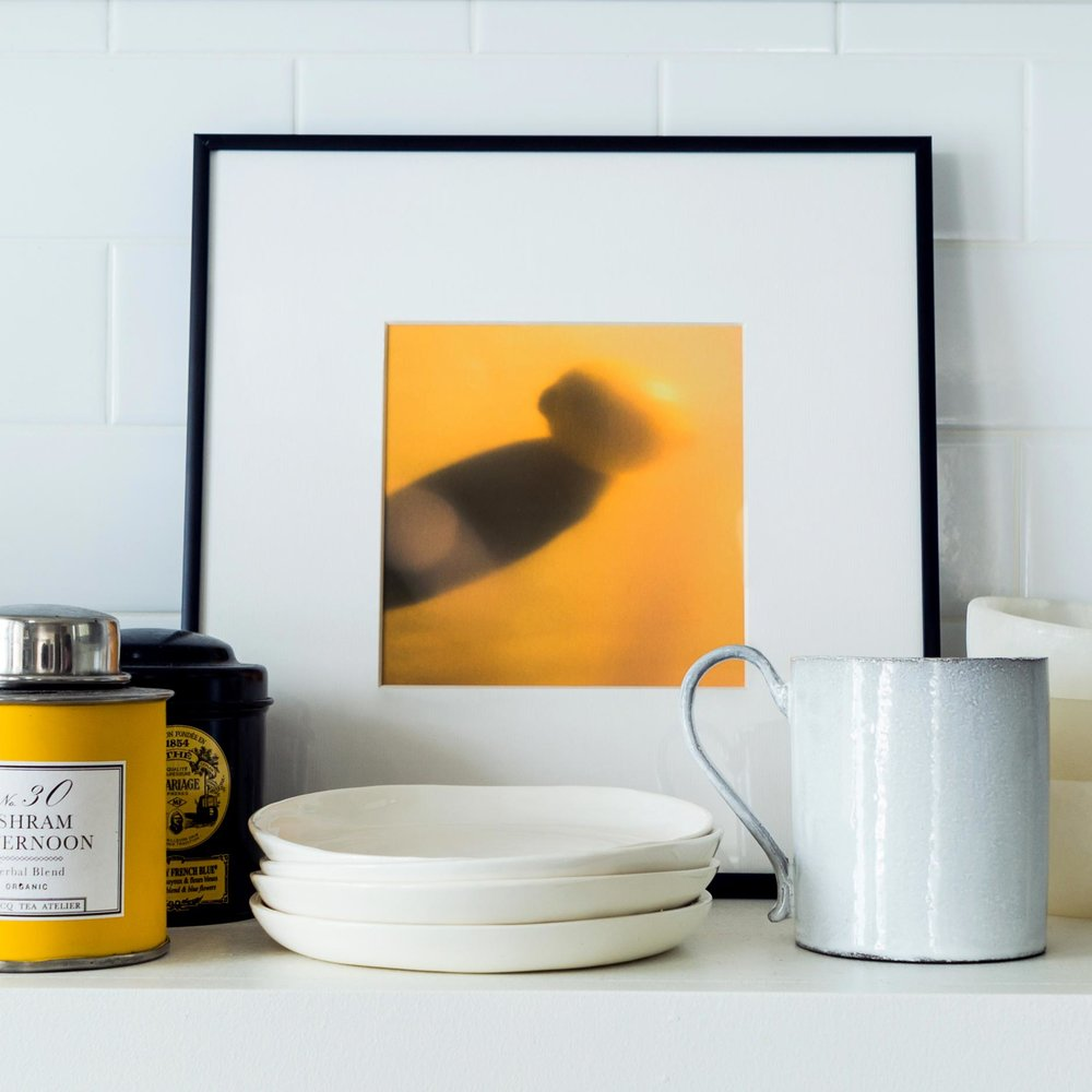 Citrus  by  Erik Melvin . Photo by  Marta X. Perez  for Artfully Walls.