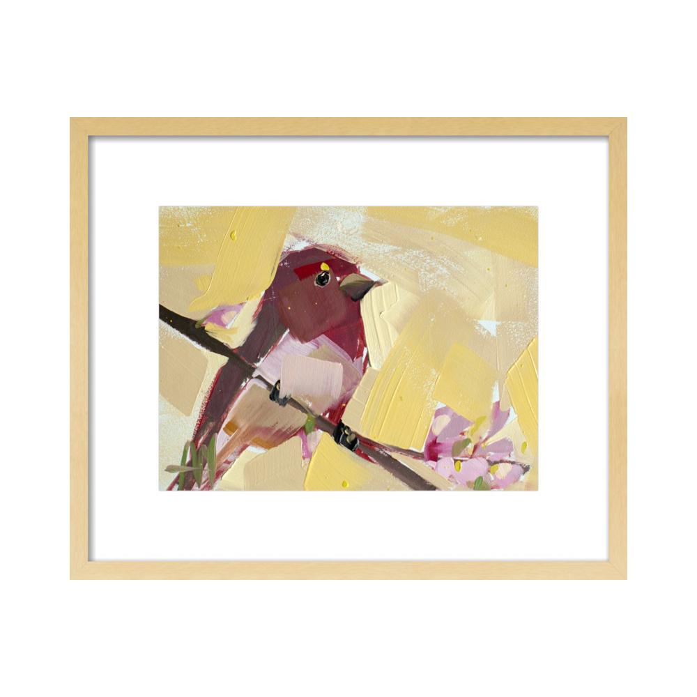 Rose Finch no. 15 by Angela Moulton