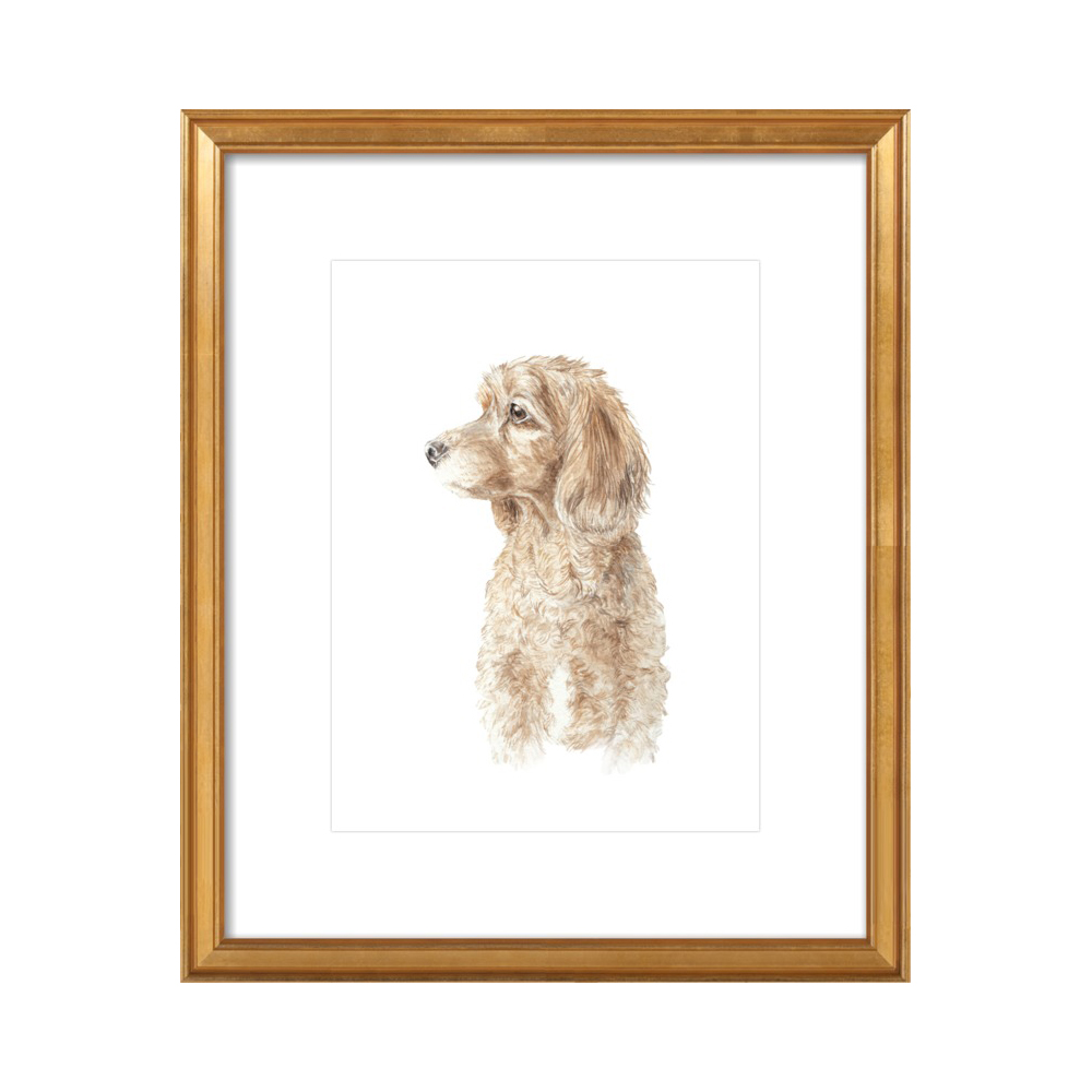 Cocker Spaniel Dog Pet Portrait Profile Watercolor by Lauren Rogoff