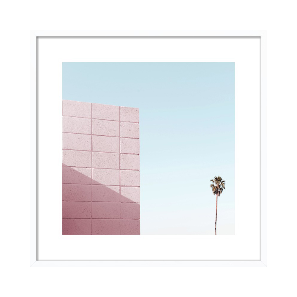 Pink Wall and Palm Tree in Palm Springs by Lucy Snowe